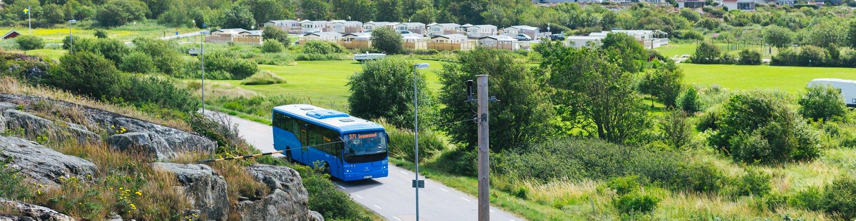 blå buss kör på landsbygd
